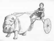 hippoWagon